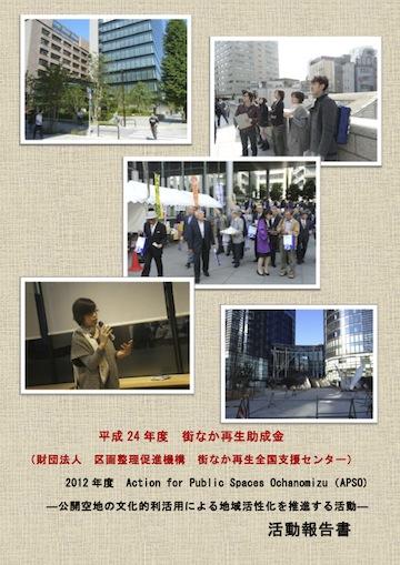 2012APSO_report_vol1
