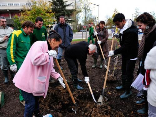 シャベルを使って、地域住民が植樹