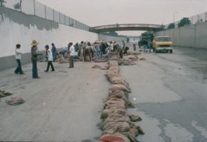 プロジェクト開始前の水路。中央に砂袋を置いて作業中の安全を確保